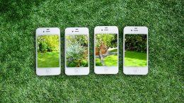 Les jardineries en ligne se démarquent des jardineries classiques